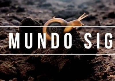 EL MUNDO SIGUE