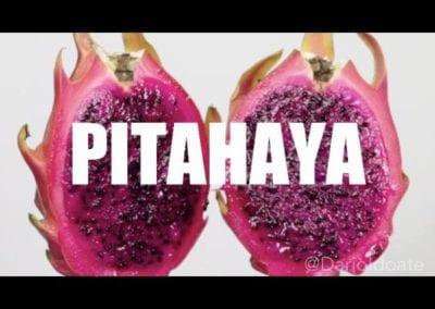 PITAHAYA TABLETOP